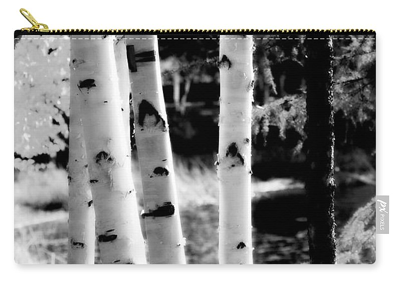 Chena Carry-all Pouch featuring the photograph Aspens L by Kathy Sampson