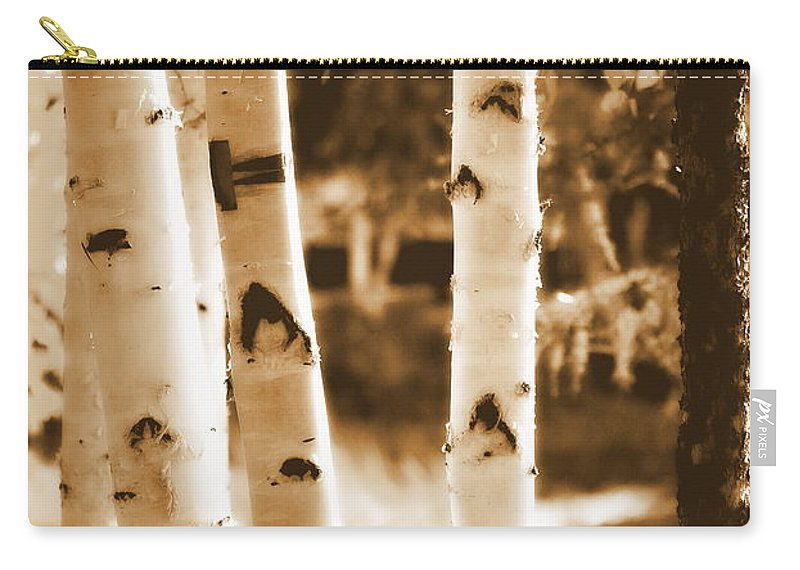 Chena Carry-all Pouch featuring the photograph Aspens Ll by Kathy Sampson