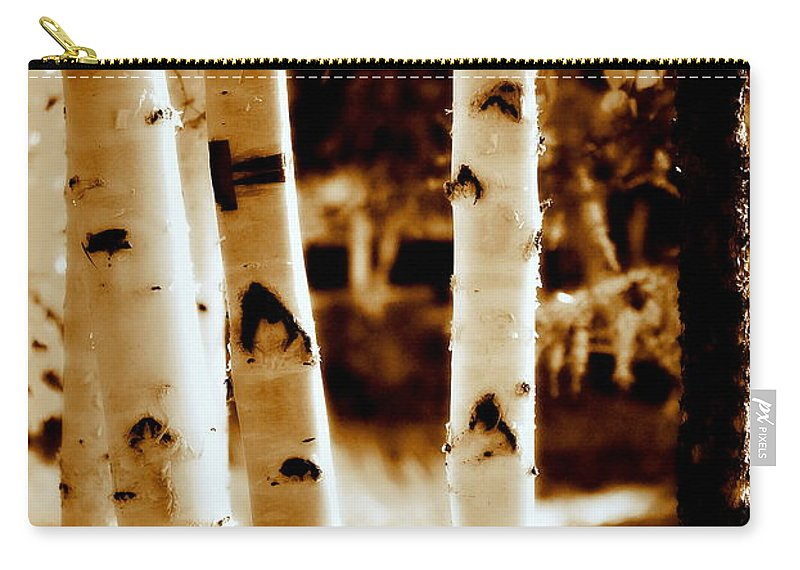 Chena Carry-all Pouch featuring the photograph Aspens Lll by Kathy Sampson