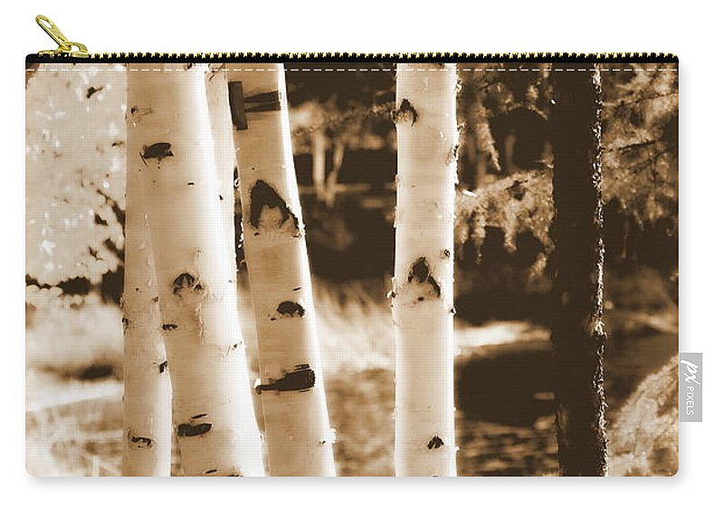 Chena Carry-all Pouch featuring the photograph Aspens Llll by Kathy Sampson