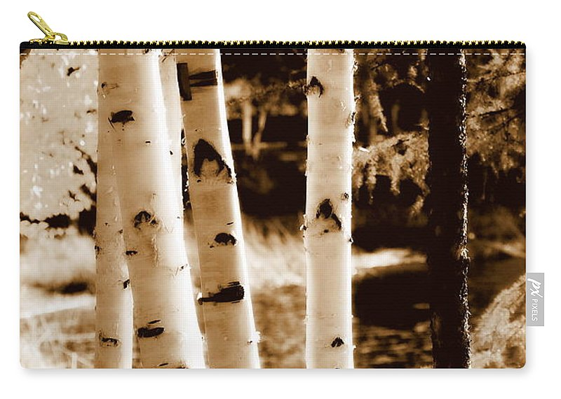 Chena Carry-all Pouch featuring the photograph Aspens S L by Kathy Sampson