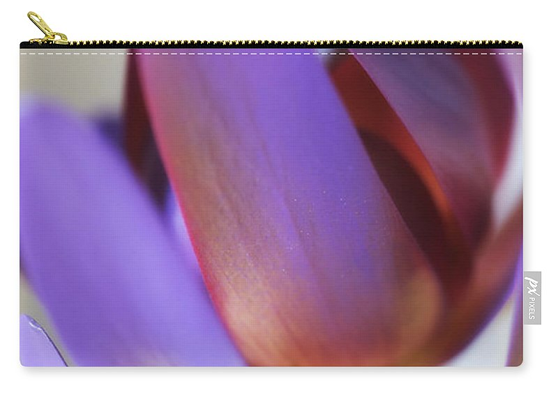 Florals Carry-all Pouch featuring the photograph At A Glance by Linda Dunn