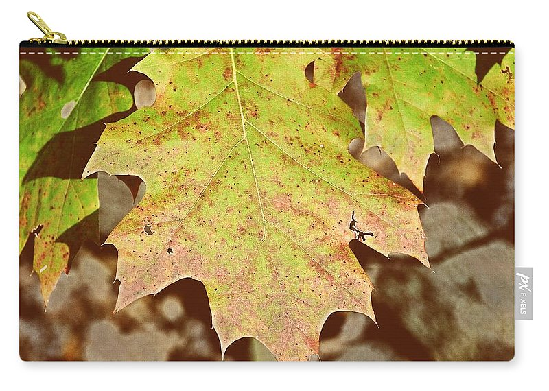 Leaf Carry-all Pouch featuring the photograph Autumn Color Palette by JAMART Photography