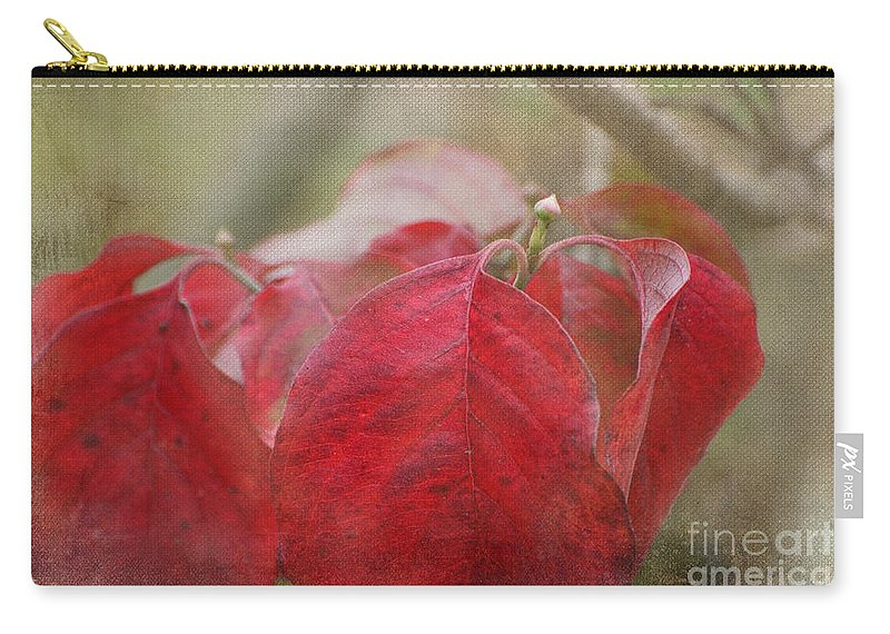 Nature Carry-all Pouch featuring the photograph Autumn Dodwood Leaves by Debbie Portwood