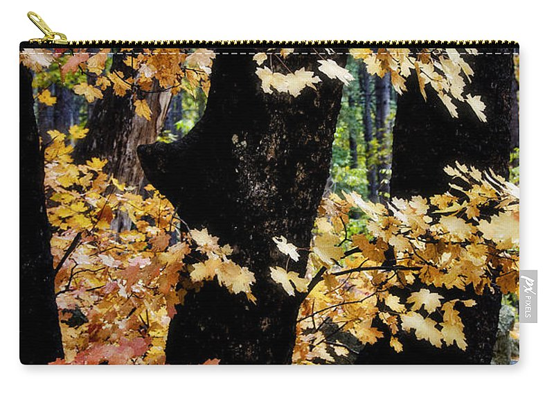 Fall Foliage Carry-all Pouch featuring the photograph Autumn Forest by Saija Lehtonen