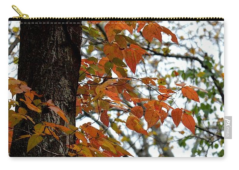 Autumn Glory At Tannehill Carry-all Pouch featuring the photograph Autumn Glory At Tannehill by Maria Urso