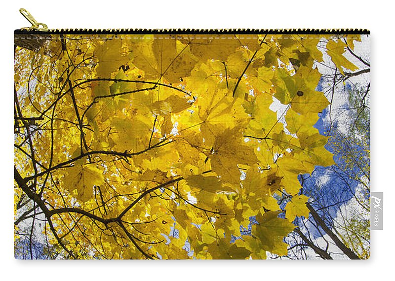 Autumn Carry-all Pouch featuring the photograph Autumn Glow by Rick Berk