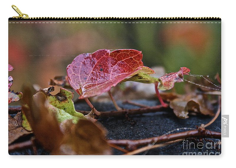 Flower Carry-all Pouch featuring the photograph Autumn Ivy In Red by Susan Herber