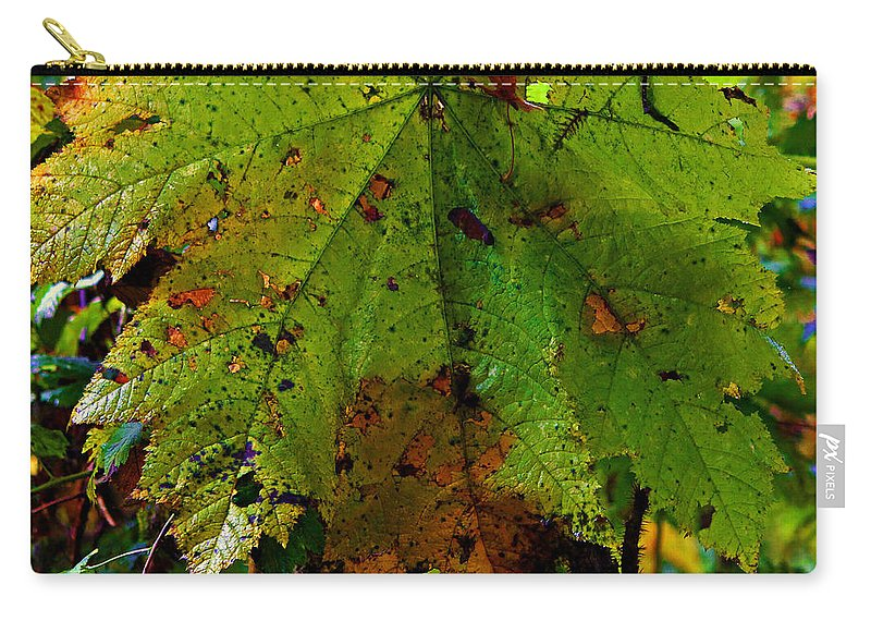 Leaf Carry-all Pouch featuring the photograph Autumn Leaf by Jeanette C Landstrom