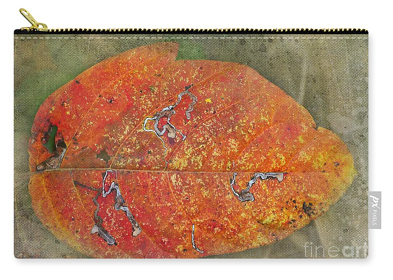 Nature Carry-all Pouch featuring the photograph Autumn Leaf With Silver Trails by Debbie Portwood