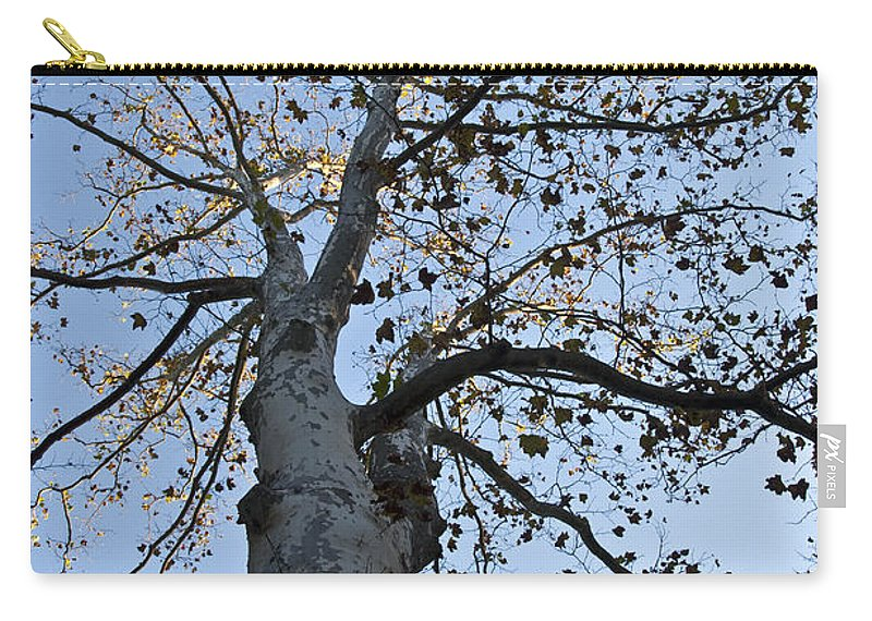 Autumn Oak Carry-all Pouch featuring the photograph Autumn Oak by Bill Cannon