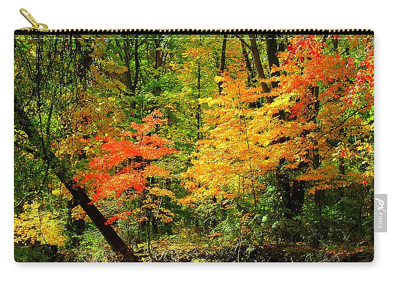 Autumn Carry-all Pouch featuring the photograph Autumn Reflects by Frozen in Time Fine Art Photography