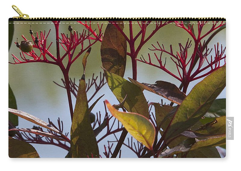 Autumn Carry-all Pouch featuring the photograph Autumn Snow Berry Bush by Darleen Stry