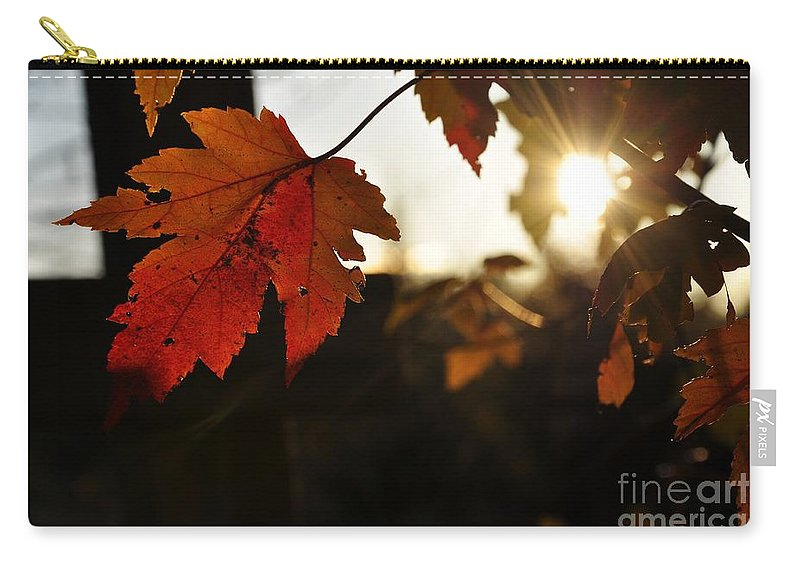 Autumn Carry-all Pouch featuring the photograph Autumn Sunburst by Cheryl Baxter