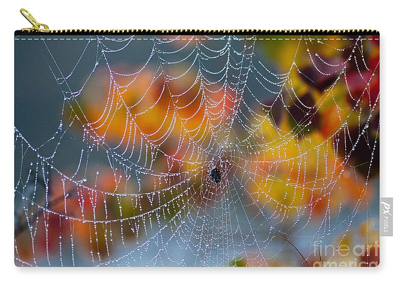 Spider Carry-all Pouch featuring the photograph Autumn Web by Joan McCool