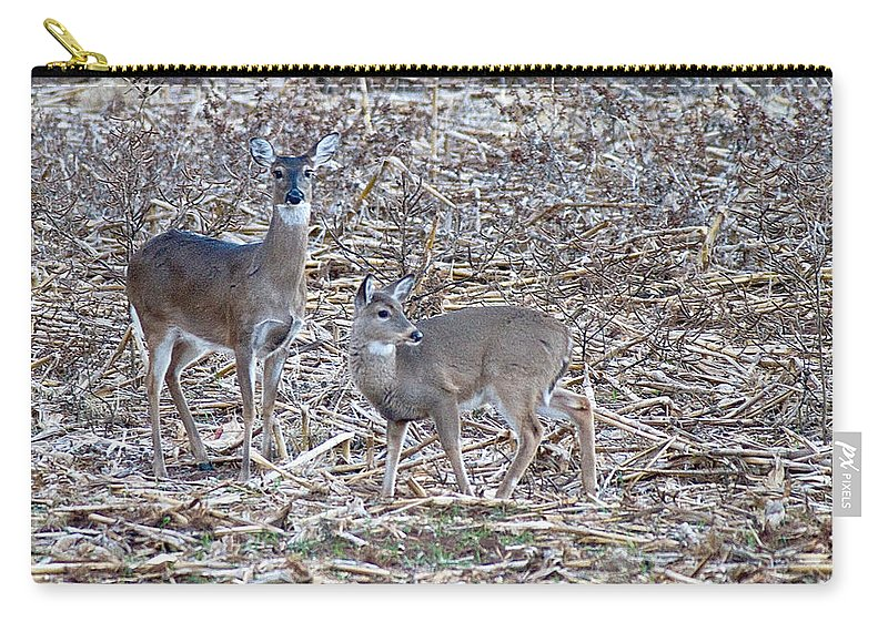 Deer Carry-all Pouch featuring the photograph Aware by Dan Wells