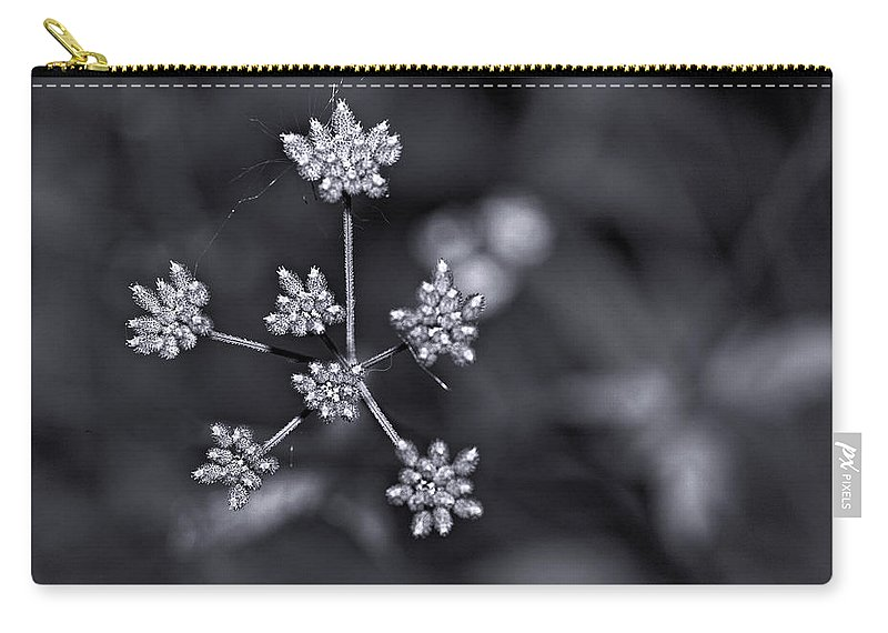 Flowers Carry-all Pouch featuring the photograph Baby Queen Anne's Lace Monochrome by Steve Harrington