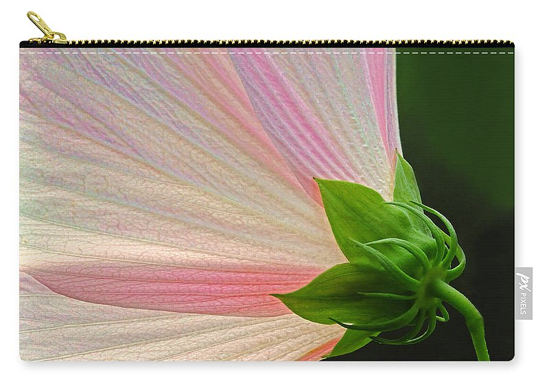 Mallow Carry-all Pouch featuring the photograph Backlit Mallow by Dave Mills