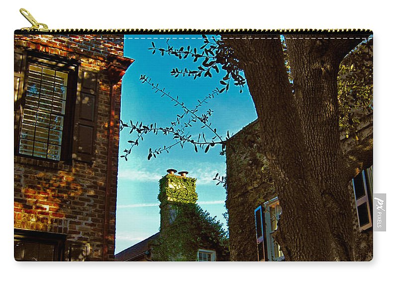 Charleston Carry-all Pouch featuring the photograph Backyard View Charleston Sc by Susanne Van Hulst