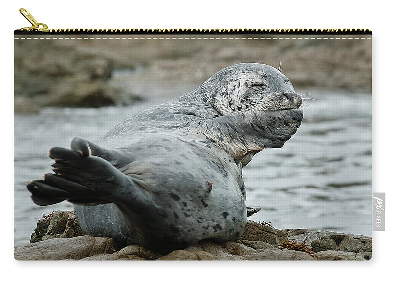 Seal Carry-all Pouch featuring the photograph Bad Habits by Greg Nyquist