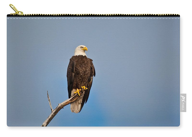 Bald Eagle Carry-all Pouch featuring the photograph Bald Eagle - Symbol Of Justice by Christine Stonebridge