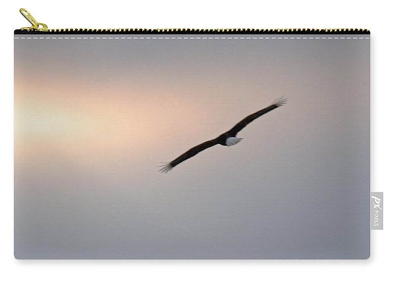 Bald Eagle Carry-all Pouch featuring the photograph Bald Eagle Flying Into Sun Glow by Crystal Heitzman Renskers