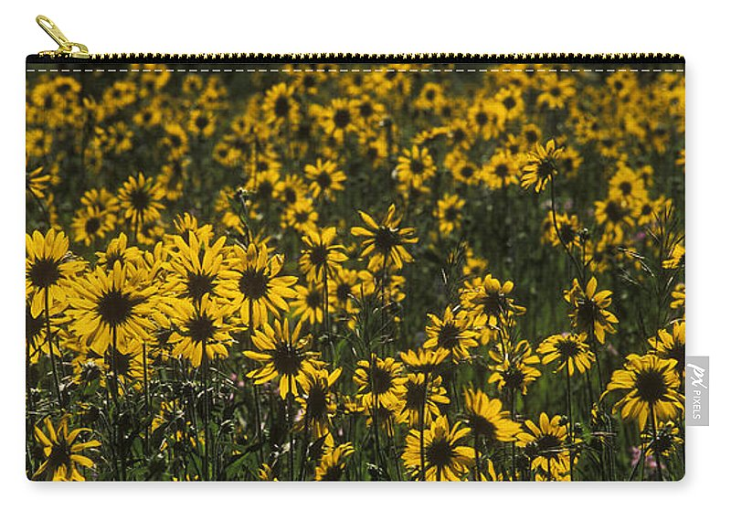 Sandra Bronstein Carry-all Pouch featuring the photograph Balsamroot Field In Grand Teton by Sandra Bronstein