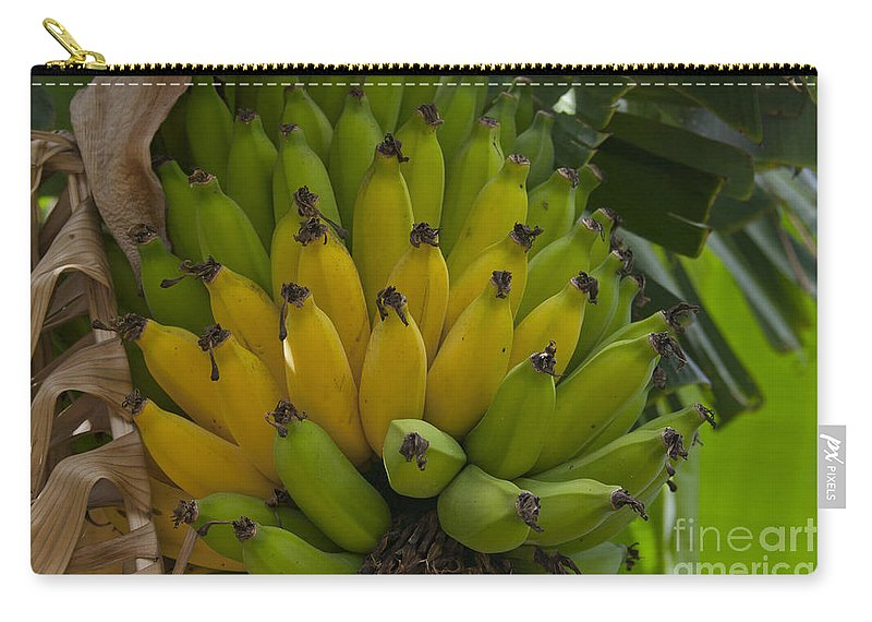 Aloha Carry-all Pouch featuring the photograph Banana by Sharon Mau