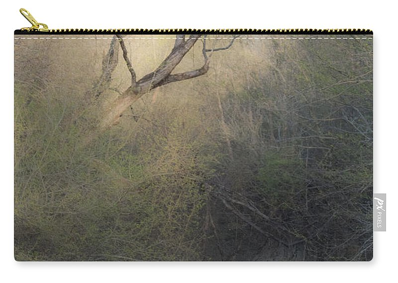 Tree Carry-all Pouch featuring the mixed media Barren Beauty by Kim Henderson