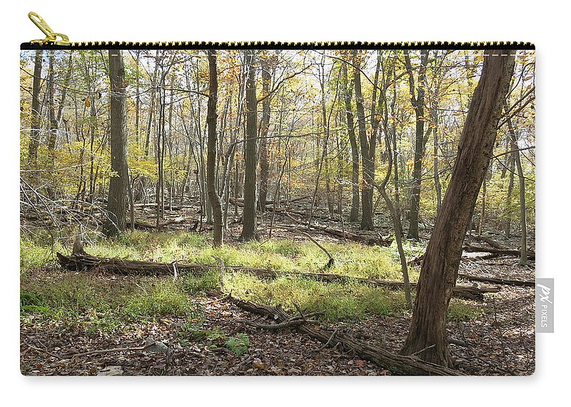 Hawk Carry-all Pouch featuring the photograph Base Of Hawk Watch by Jean Macaluso