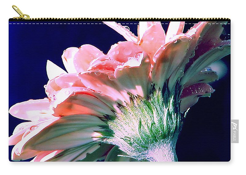 Gerbera Daisy Carry-all Pouch featuring the photograph Bathing In Moonlight by Rory Sagner