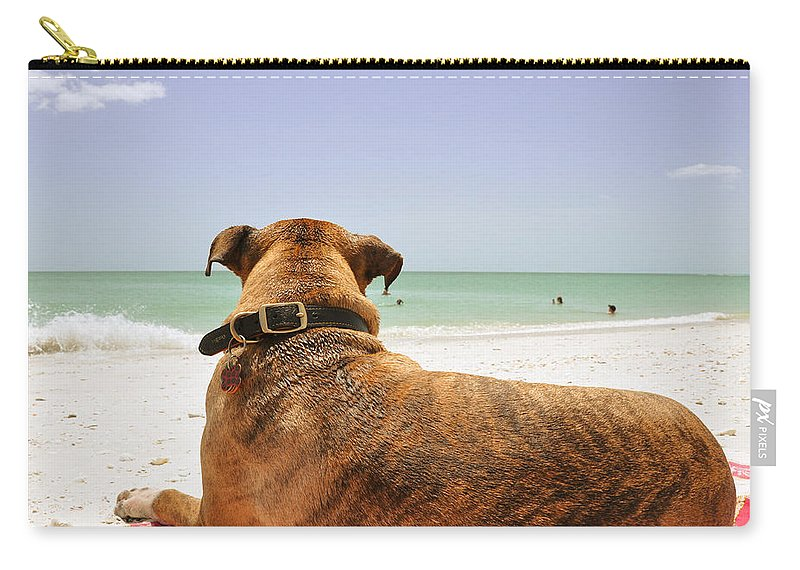 Dog Carry-all Pouch featuring the photograph Beach Blanket Tugboat by Christine Stonebridge