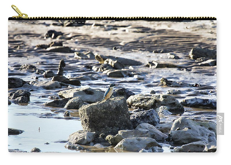 Kingfisher Carry-all Pouch featuring the photograph Beach Dweller by Douglas Barnard