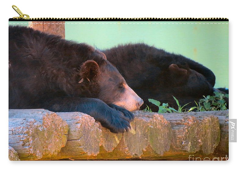 Bear Carry-all Pouch featuring the photograph Bear Nap by Art Dingo