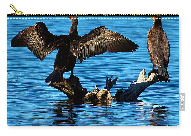 Cormorants Carry-all Pouch featuring the photograph Beautiful Day by Adam Jewell