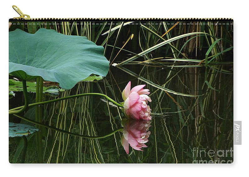 Nelumbo Lutea Nucifera Carry-all Pouch featuring the photograph Beautiful Fallen Lotus by Byron Varvarigos