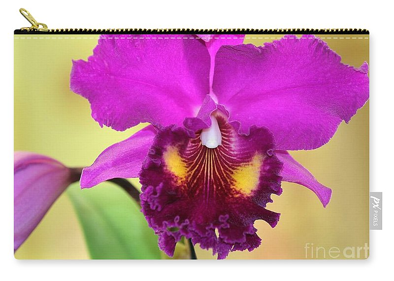Orchid Carry-all Pouch featuring the photograph Beautiful Hot Pink Orchid by Sabrina L Ryan