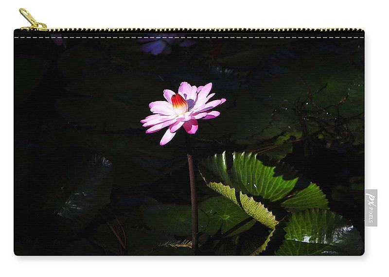 Fine Art Photography Carry-all Pouch featuring the photograph Beauty From The Depths by David Lee Thompson