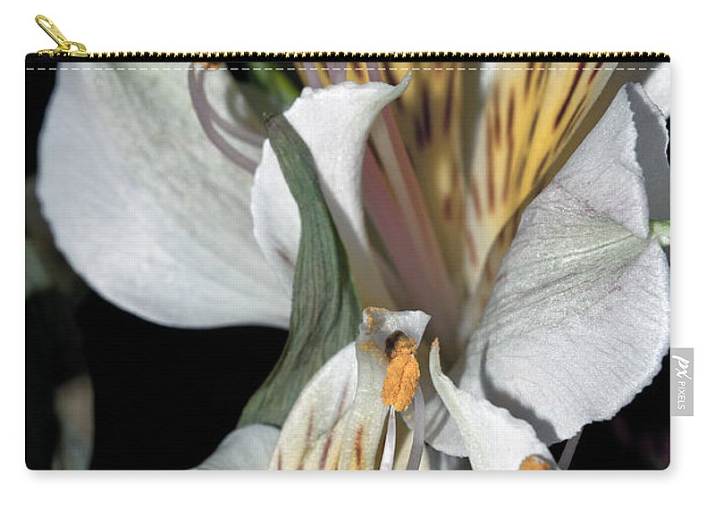Flower Carry-all Pouch featuring the photograph Beauty Untold by Tikvah's Hope