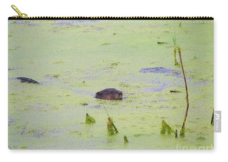 Beaver Carry-all Pouch featuring the photograph Beaver by Art Dingo