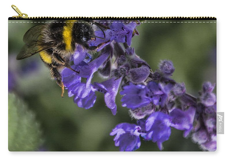 Bee Carry-all Pouch featuring the photograph Bee by David Gleeson