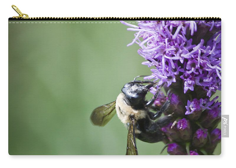 Gayfeather Carry-all Pouch featuring the photograph Bee On Gayfeather by Teresa Mucha