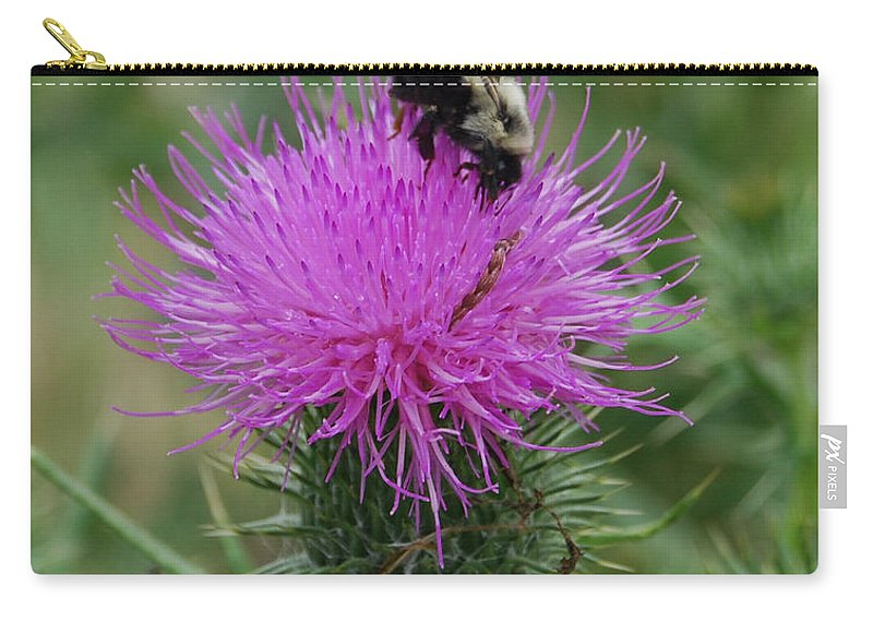 Thistle Carry-all Pouch featuring the photograph Bee On Thistle by Grace Grogan