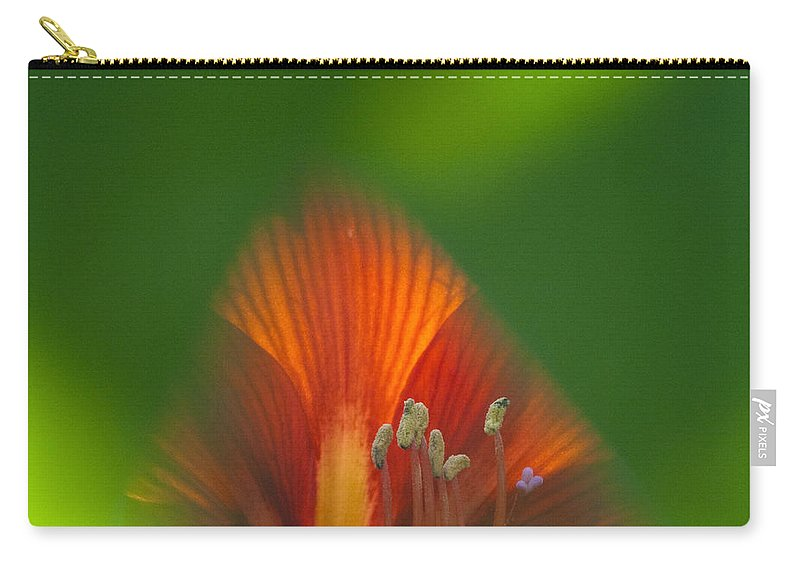 Heiko Carry-all Pouch featuring the photograph Belladonna Lily Closeup by Heiko Koehrer-Wagner