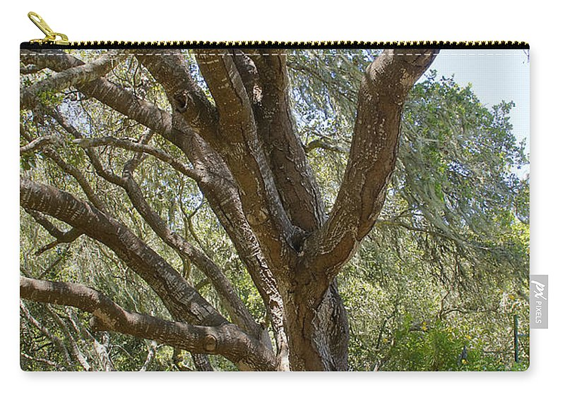 Cambria Carry-all Pouch featuring the photograph Bench And Tree In Cambria by Mick Anderson