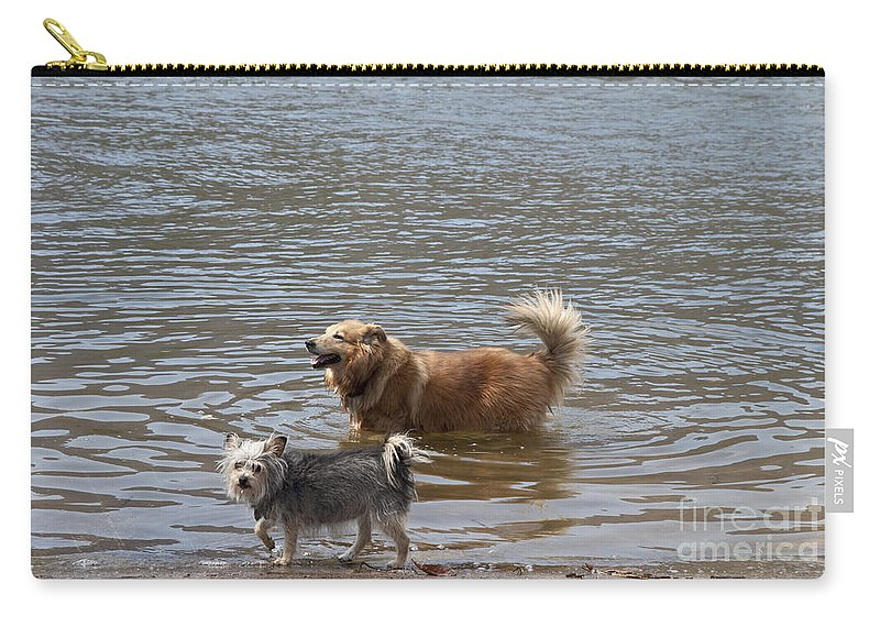 Dogs Carry-all Pouch featuring the photograph Best Friends by Jeannette Hunt