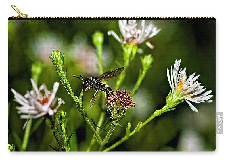 Flower Carry-all Pouch featuring the photograph Between Jobs by Steve Harrington