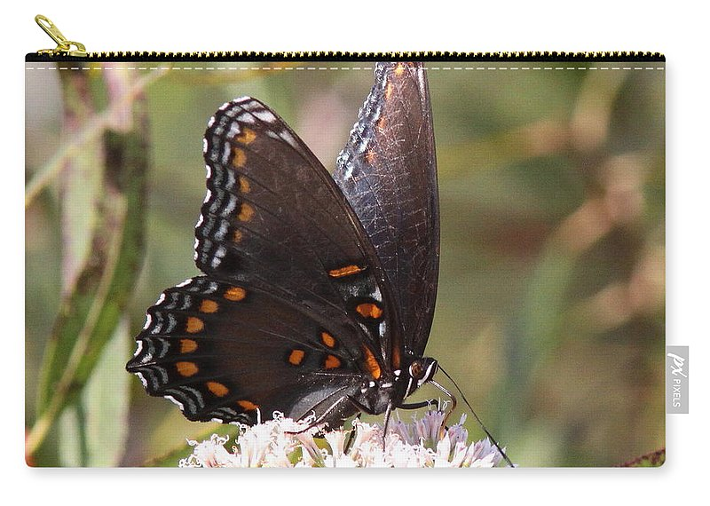 Carry-all Pouch featuring the photograph Big Beauty by Travis Truelove
