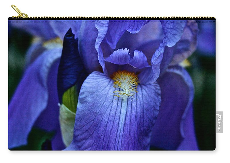 Outdoors Carry-all Pouch featuring the photograph Big Blue by Susan Herber