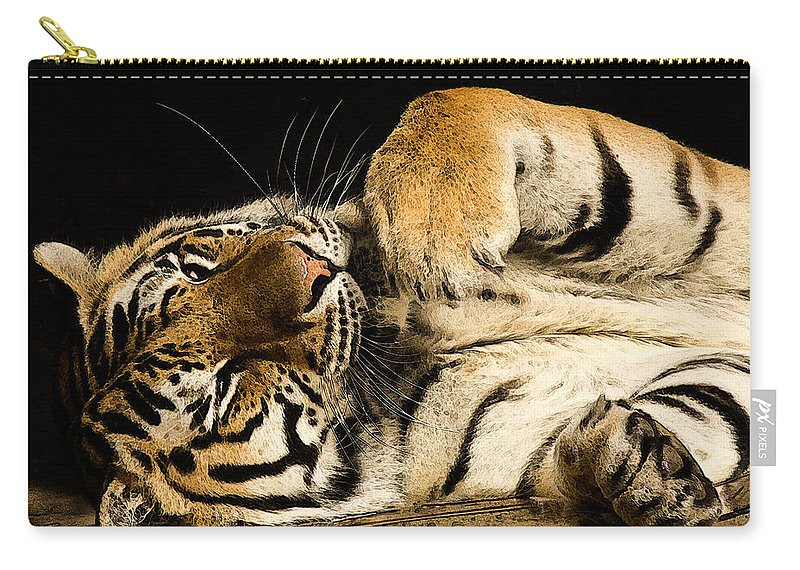 Jean Noren Carry-all Pouch featuring the photograph Big Cat by Jean Noren